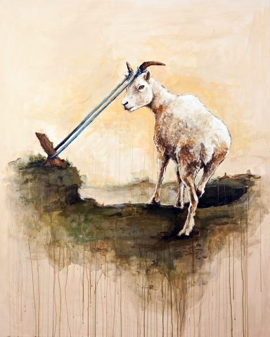 Tethered_Goat